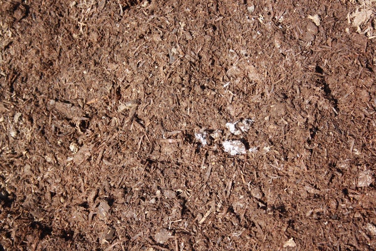 Bulk Garden Soil Supplies Lara Elcho Garden Supplies